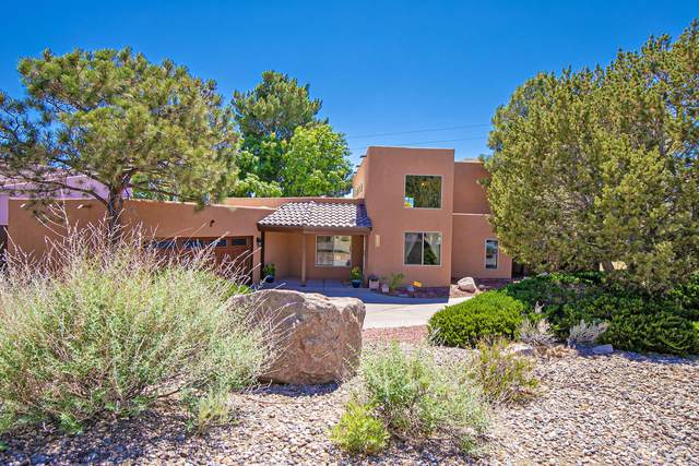 3905 Calle Castano NE, Albuquerque, NM 87111 (MLS #968485) :: The Buchman Group