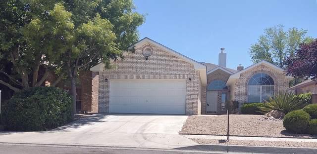 8316 Calle Soquelle NE, Albuquerque, NM 87113 (MLS #968486) :: Campbell & Campbell Real Estate Services