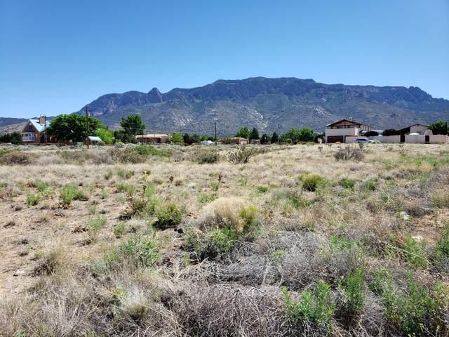 000 Signal Avenue NE, Albuquerque, NM 87122 (MLS #968654) :: The Buchman Group