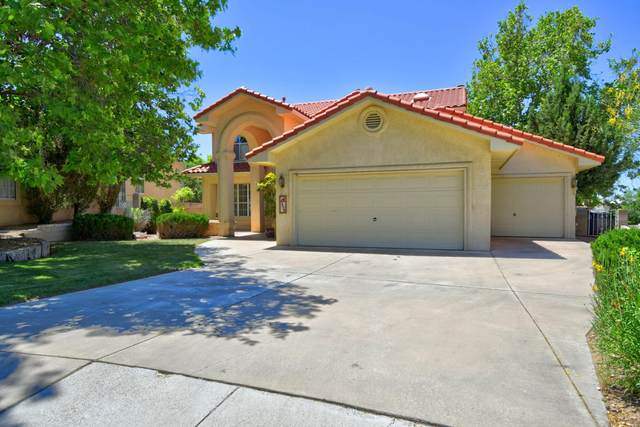 9928 Wellington NE, Albuquerque, NM 87111 (MLS #968663) :: The Buchman Group