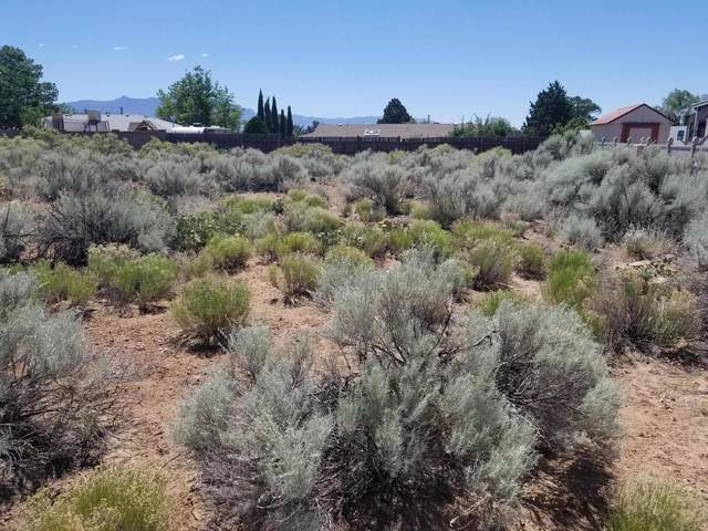 96 Utah Meadow Road NE, Rio Rancho, NM 87124 (MLS #968669) :: Campbell & Campbell Real Estate Services