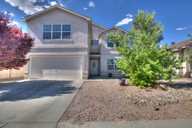 6119 Calle Corazon Court NW, Albuquerque, NM 87114 (MLS #968685) :: The Buchman Group