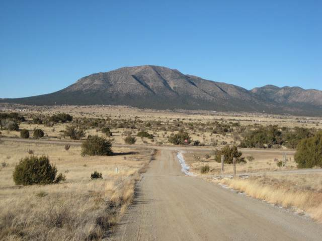 0 Cajun Court, Edgewood, NM 87015 (MLS #968722) :: Campbell & Campbell Real Estate Services