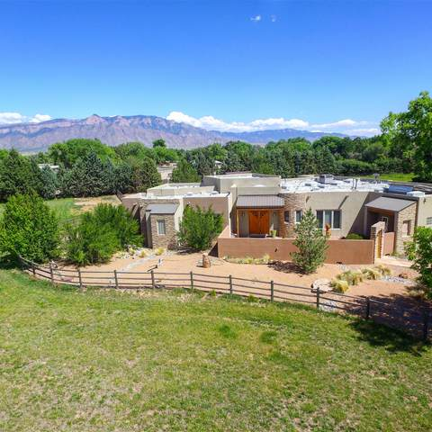 7777 Corrales Road, Corrales, NM 87048 (MLS #968792) :: Campbell & Campbell Real Estate Services