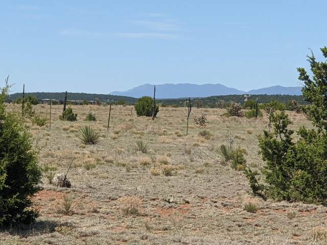 Indian Hills -- Lot 47, Moriarty, NM 87035 (MLS #968819) :: Campbell & Campbell Real Estate Services
