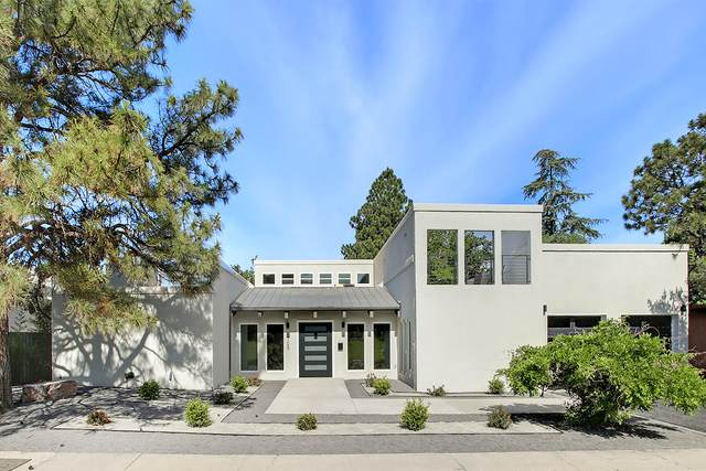 1705 Morningside Drive NE, Albuquerque, NM 87110 (MLS #968837) :: The Buchman Group