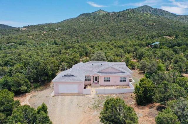 46 Calle Del Pinon Road, Sandia Park, NM 87047 (MLS #968849) :: Campbell & Campbell Real Estate Services