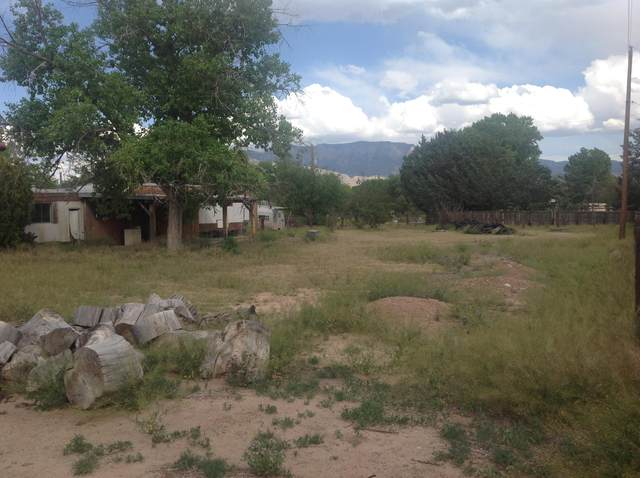 595 Mountain Shadows Road, Corrales, NM 87048 (MLS #968855) :: Campbell & Campbell Real Estate Services