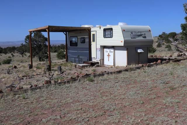 193 Agua Fria Trail, Datil, NM 87821 (MLS #968887) :: Keller Williams Realty
