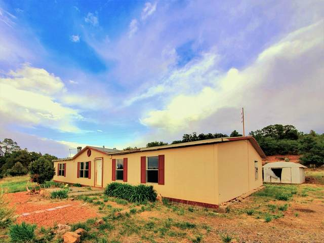 9 Old Gallina Road, Regina, NM 87046 (MLS #968899) :: Campbell & Campbell Real Estate Services