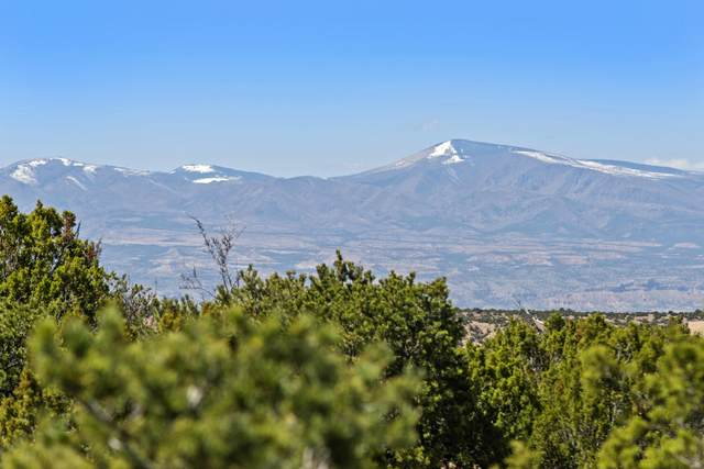 94 Paseo Encantado NE, Santa Fe, NM 87506 (MLS #968933) :: The Bigelow Team / Red Fox Realty