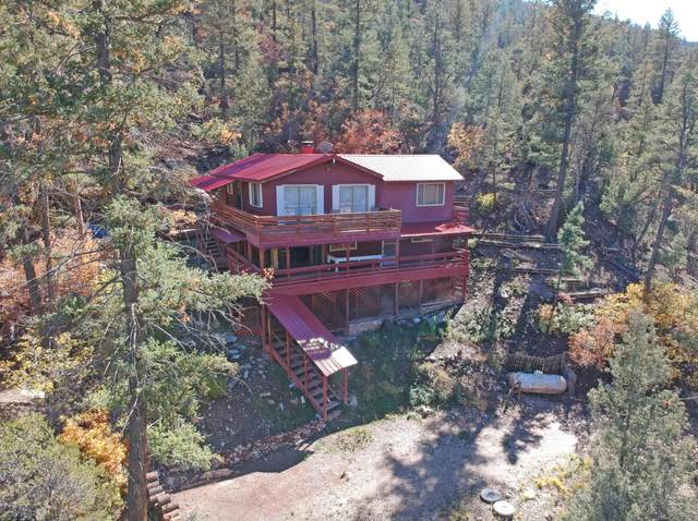 56 River Road, Jemez Springs, NM 87025 (MLS #968957) :: The Buchman Group