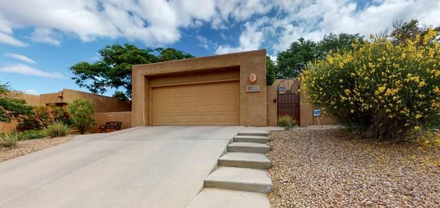 6409 Prairie Road NE, Albuquerque, NM 87109 (MLS #968961) :: Sandi Pressley Team