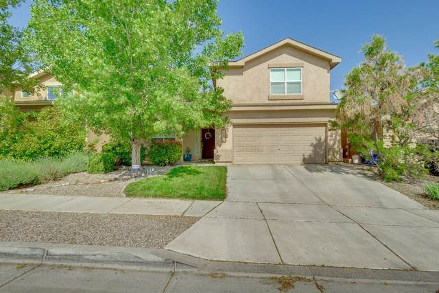 10431 Vallecito Drive NW, Albuquerque, NM 87114 (MLS #968970) :: Sandi Pressley Team