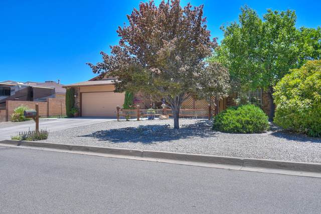 1840 Regency Park Road SE, Rio Rancho, NM 87124 (MLS #969003) :: Campbell & Campbell Real Estate Services
