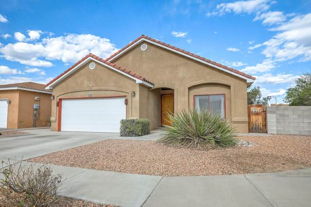 4100 Ojos Prieto Drive NW, Albuquerque, NM 87120 (MLS #969022) :: The Buchman Group