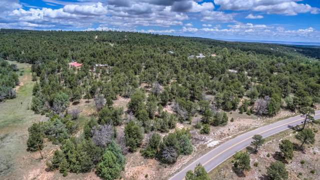 41 Martinez Road, Edgewood, NM 87015 (MLS #969026) :: Campbell & Campbell Real Estate Services