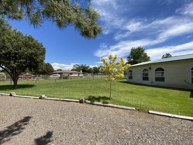 39 Avenida Alegre, Los Lunas, NM 87031 (MLS #969032) :: Campbell & Campbell Real Estate Services