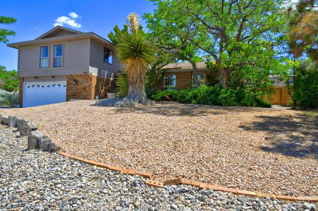 4500 Larchmont Drive NE, Albuquerque, NM 87111 (MLS #969091) :: Campbell & Campbell Real Estate Services