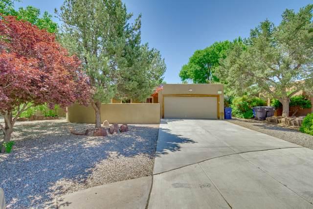 1304 Camino Amparo NW, Albuquerque, NM 87107 (MLS #969099) :: Campbell & Campbell Real Estate Services