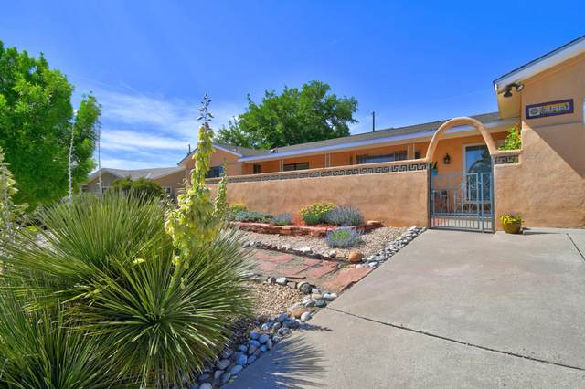 9113 Lagrima De Oro Road NE, Albuquerque, NM 87111 (MLS #969125) :: Campbell & Campbell Real Estate Services