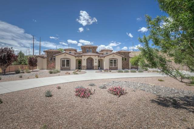 9515 Lyndale Lane NW, Albuquerque, NM 87114 (MLS #969153) :: The Buchman Group