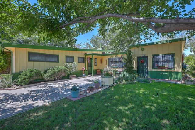 1501 Mary Ellen Street NE, Albuquerque, NM 87112 (MLS #969164) :: Campbell & Campbell Real Estate Services