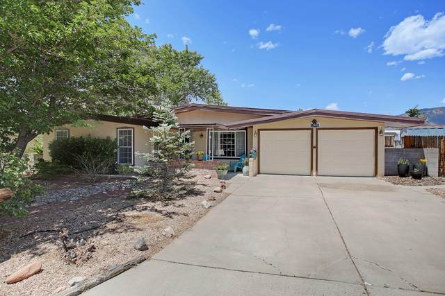 12025 Apache Avenue NE, Albuquerque, NM 87112 (MLS #969167) :: Campbell & Campbell Real Estate Services