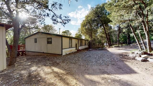 74 Big Dipper Road, Tijeras, NM 87059 (MLS #969222) :: Campbell & Campbell Real Estate Services