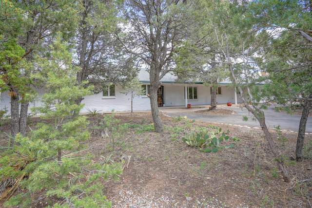 17 Snaffel Place, Tijeras, NM 87059 (MLS #969224) :: Campbell & Campbell Real Estate Services