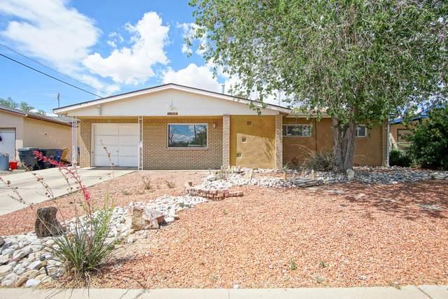 11505 Hannett Avenue NE, Albuquerque, NM 87112 (MLS #969225) :: Campbell & Campbell Real Estate Services