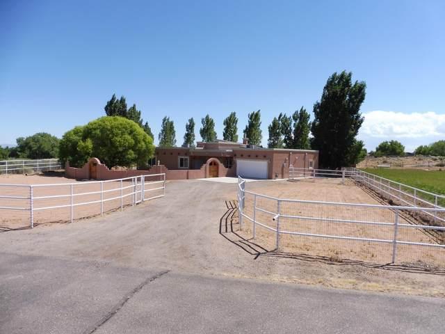 5 Del Cerro Court, Los Lunas, NM 87031 (MLS #969250) :: The Buchman Group