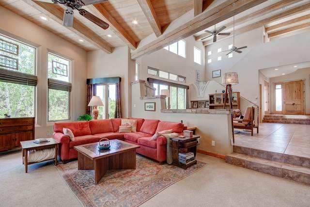 48 Sandia Mountain Ranch Drive, Tijeras, NM 87059 (MLS #969253) :: The Buchman Group
