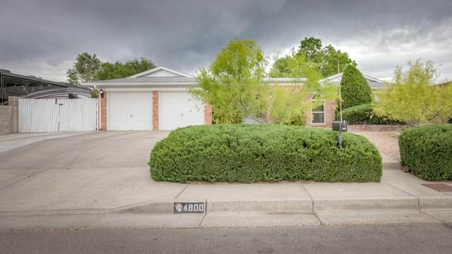 4800 Dona Rowena Avenue NE, Albuquerque, NM 87111 (MLS #969289) :: The Buchman Group