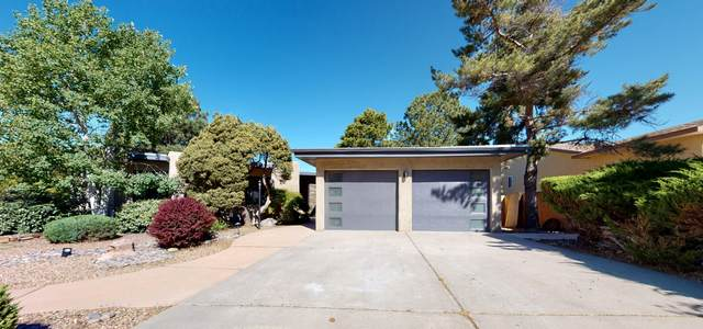 13209 Sunset Canyon Drive NE, Albuquerque, NM 87111 (MLS #969297) :: The Buchman Group