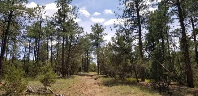 0 Camino Del Espiritu, Golden, NM 87047 (MLS #969298) :: Berkshire Hathaway HomeServices Santa Fe Real Estate