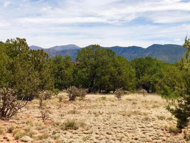 22 Anasazi Drive, Sandia Park, NM 87047 (MLS #969305) :: Campbell & Campbell Real Estate Services