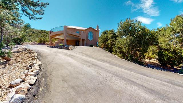 928 State Highway 165, Placitas, NM 87043 (MLS #969325) :: The Buchman Group