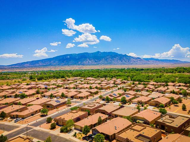 1029 Purple Aster Drive NE, Bernalillo, NM 87004 (MLS #969338) :: Campbell & Campbell Real Estate Services