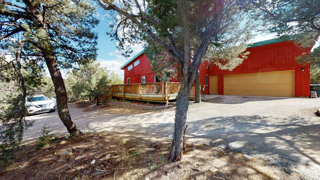 1 Imelda Court, Tijeras, NM 87059 (MLS #969343) :: Campbell & Campbell Real Estate Services