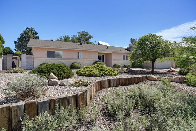 3803 Torrey Pines Road SE, Rio Rancho, NM 87124 (MLS #969344) :: Campbell & Campbell Real Estate Services