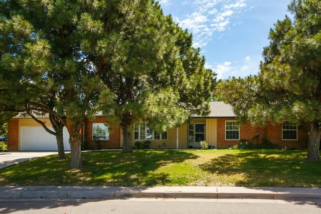 3712 Vermont Street NE, Albuquerque, NM 87110 (MLS #969413) :: The Buchman Group