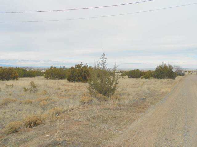 Park Road, Edgewood, NM 87015 (MLS #969427) :: Campbell & Campbell Real Estate Services