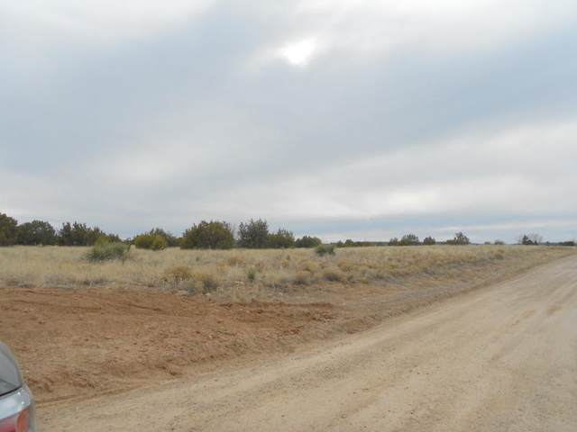 Park Road, Edgewood, NM 87015 (MLS #969434) :: The Buchman Group