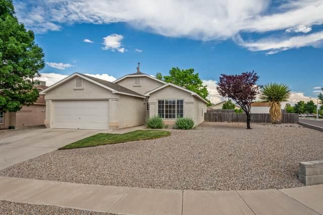 452 Burton Meadows Drive NE, Rio Rancho, NM 87144 (MLS #969483) :: Campbell & Campbell Real Estate Services