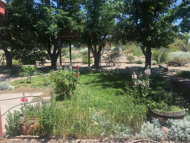104 Goulet Court, Rio Communities, NM 87002 (MLS #969500) :: The Buchman Group