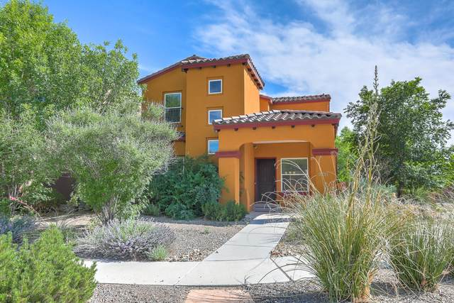 5731 Witkin Street SE, Albuquerque, NM 87105 (MLS #969587) :: The Buchman Group