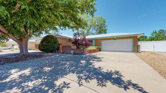 6117 Rogers Avenue NE, Albuquerque, NM 87110 (MLS #969588) :: The Buchman Group