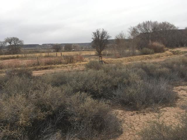 Hwy 313, Algodones, NM 87001 (MLS #970729) :: Campbell & Campbell Real Estate Services
