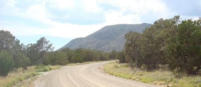 83 Vista Sierra, Edgewood, NM 87015 (MLS #970808) :: The Bigelow Team / Red Fox Realty